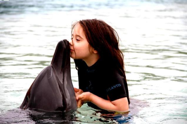 mara delfin