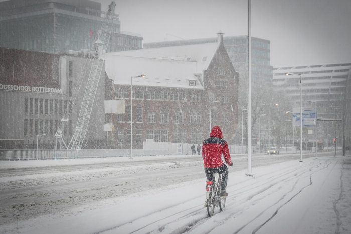 iarna Olanda 3