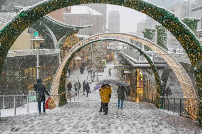 iarna Olanda 5