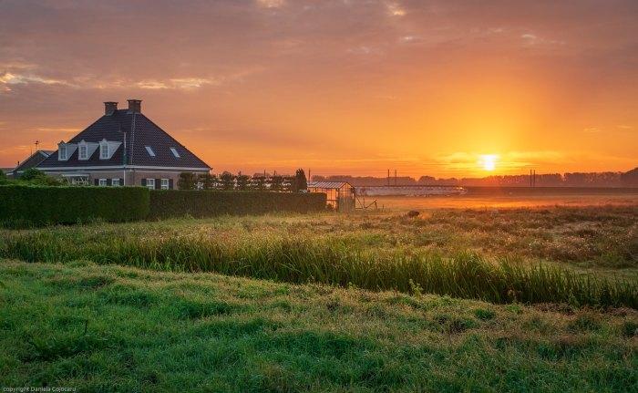 toamna olandeza (3)