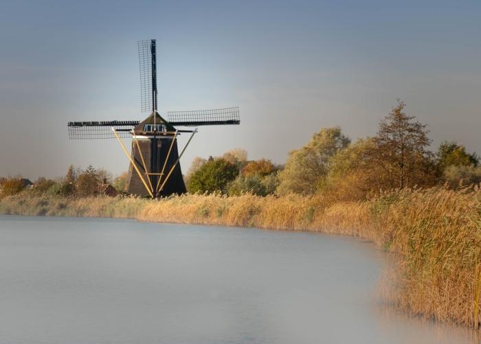 toamna olandeza (9)
